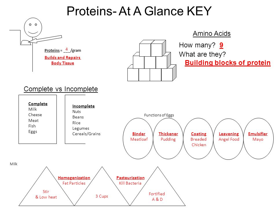 Proteins- At A Glance KEY