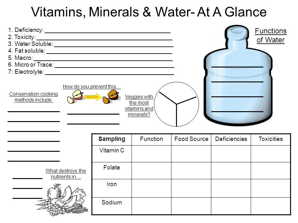 Vitamins, Minerals & Water- At A Glance