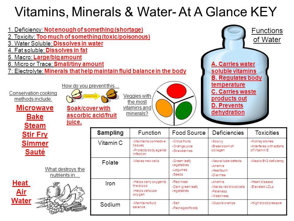 Vitamins, Minerals & Water- At A Glance KEY