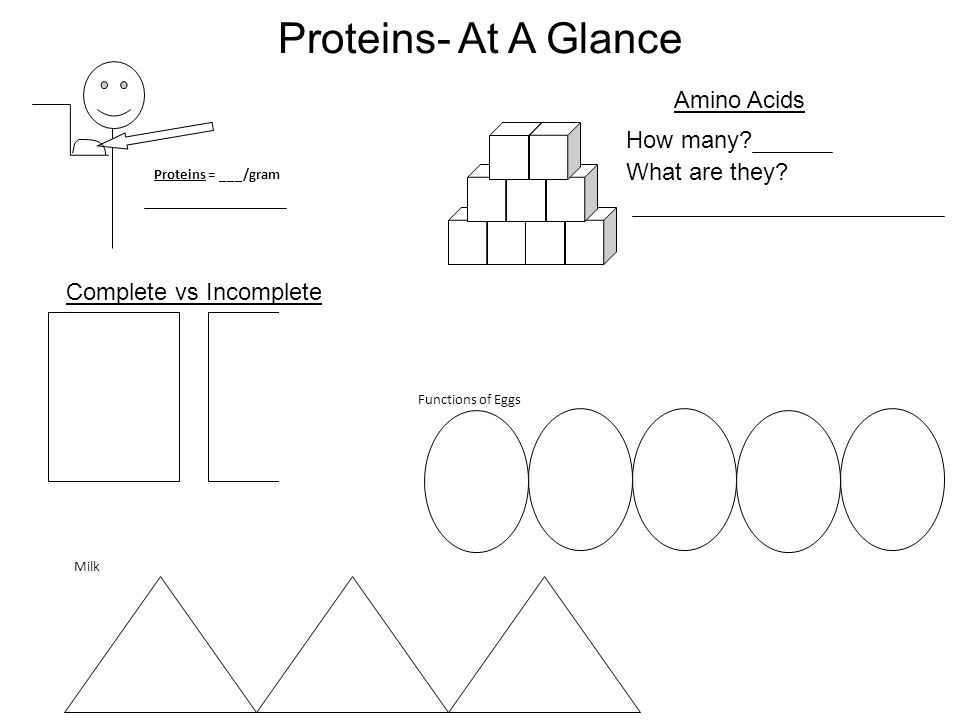 Proteins- At A Glance Amino Acids How many What are they