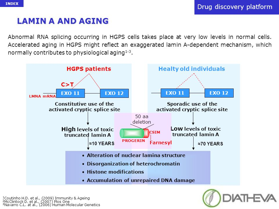 LAMIN A AND AGING Drug discovery platform