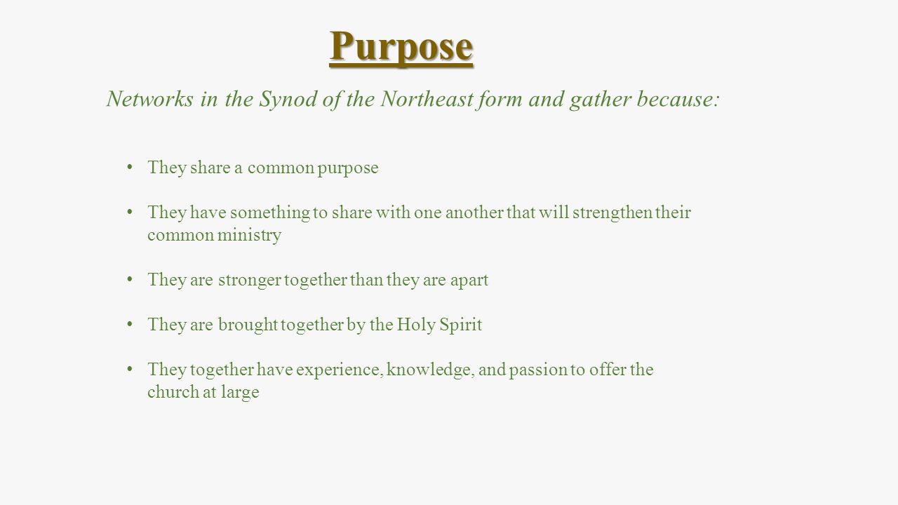 Networks in the Synod of the Northeast form and gather because: