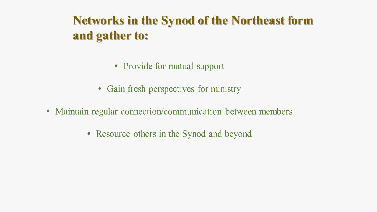 Networks in the Synod of the Northeast form and gather to: