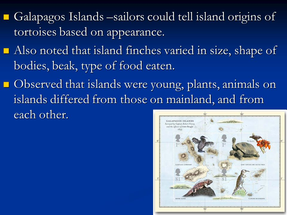 Galapagos Islands –sailors could tell island origins of tortoises based on appearance.
