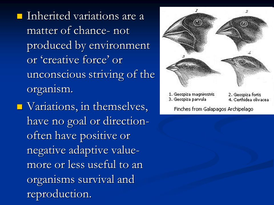 Inherited variations are a matter of chance- not produced by environment or 'creative force' or unconscious striving of the organism.