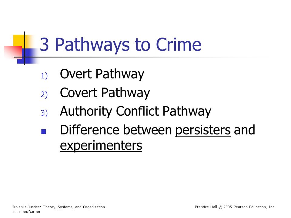 Difference Between Foyer And Hallway : Theoretical explanations of delinquency ppt video online