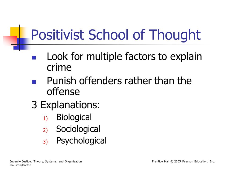Positivist School of Thought