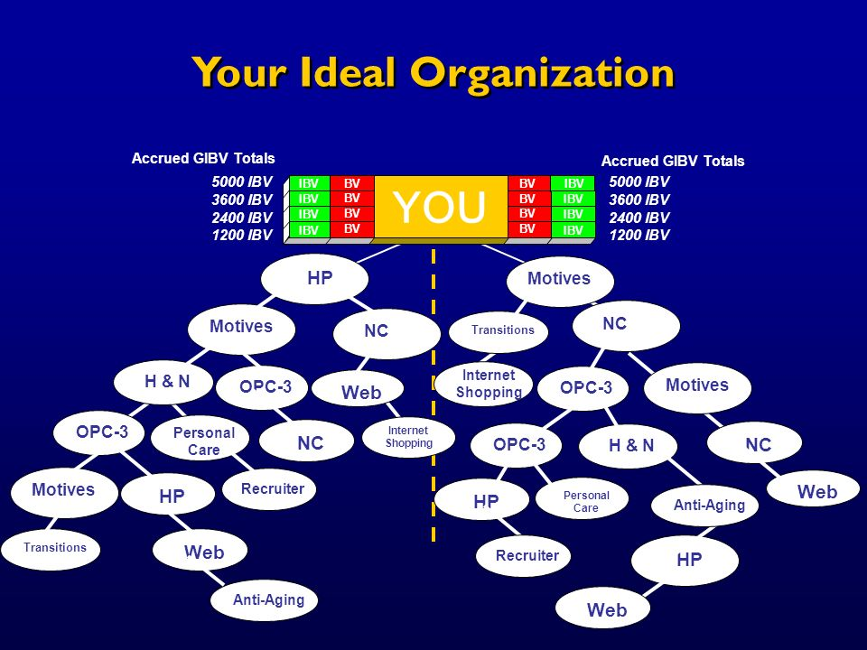 Your Ideal Organization