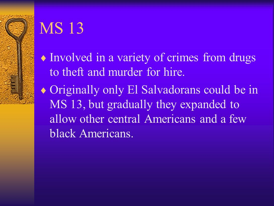 MS 13 Involved in a variety of crimes from drugs to theft and murder for hire.