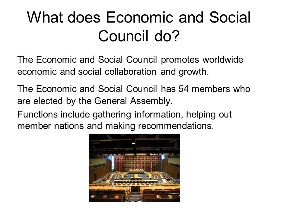 What does Economic and Social Council do