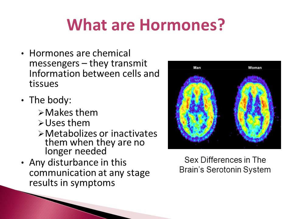 Sex Differences in The Brain's Serotonin System