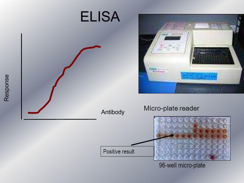 ELISA Micro-plate reader 96-well micro-plate Response Antibody