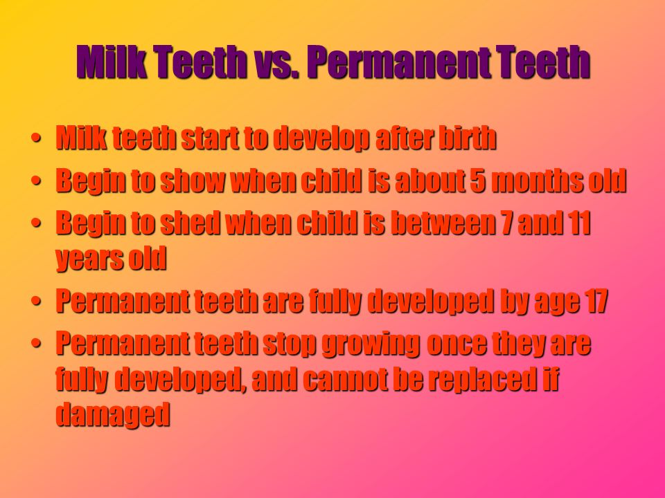 Milk Teeth vs. Permanent Teeth