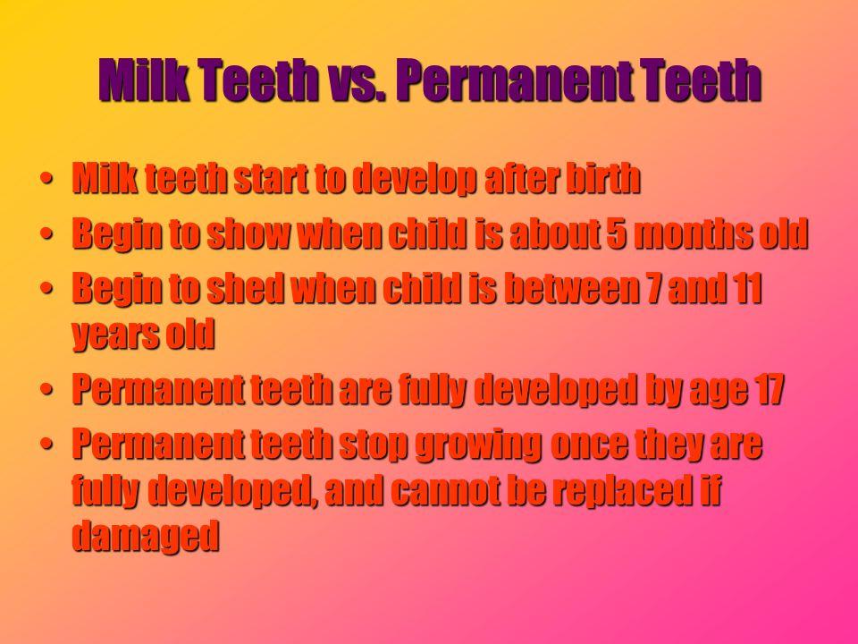 Milk Teeth vs. Permanent Teeth