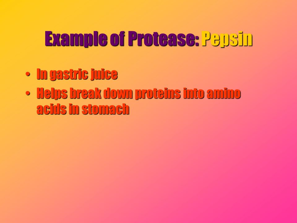 Example of Protease: Pepsin