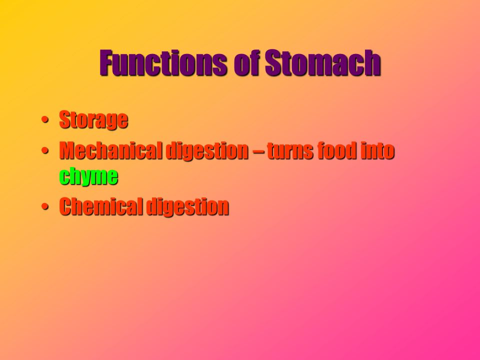 Functions of Stomach Storage