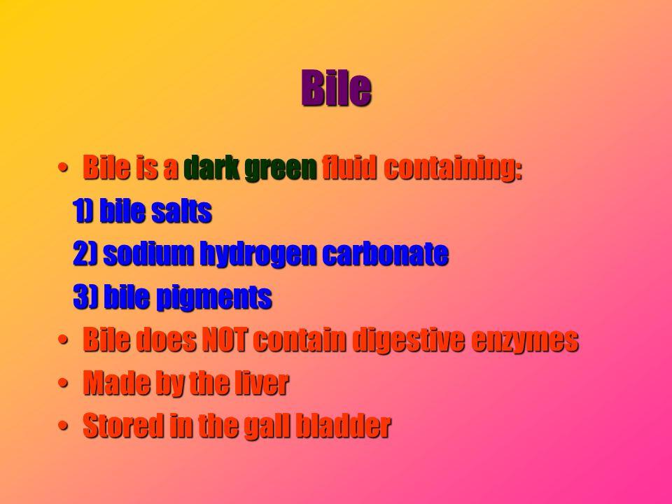 Bile Bile is a dark green fluid containing: 1) bile salts