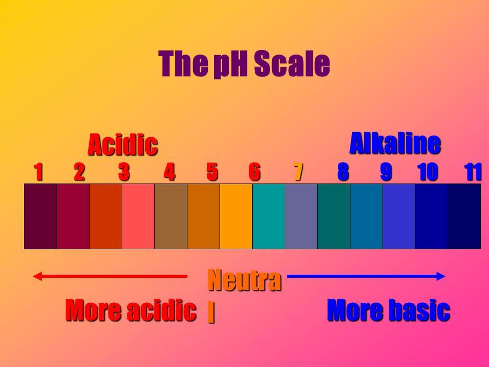 The pH Scale Acidic Alkaline Neutral More acidic More basic