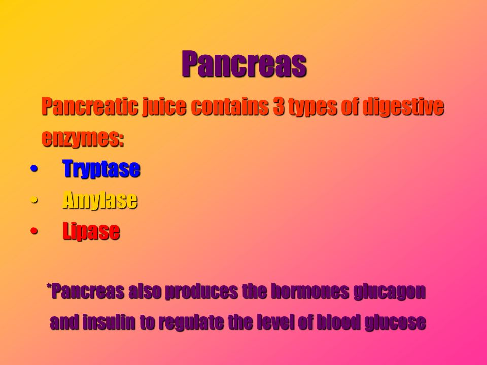 Pancreas Pancreatic juice contains 3 types of digestive enzymes: