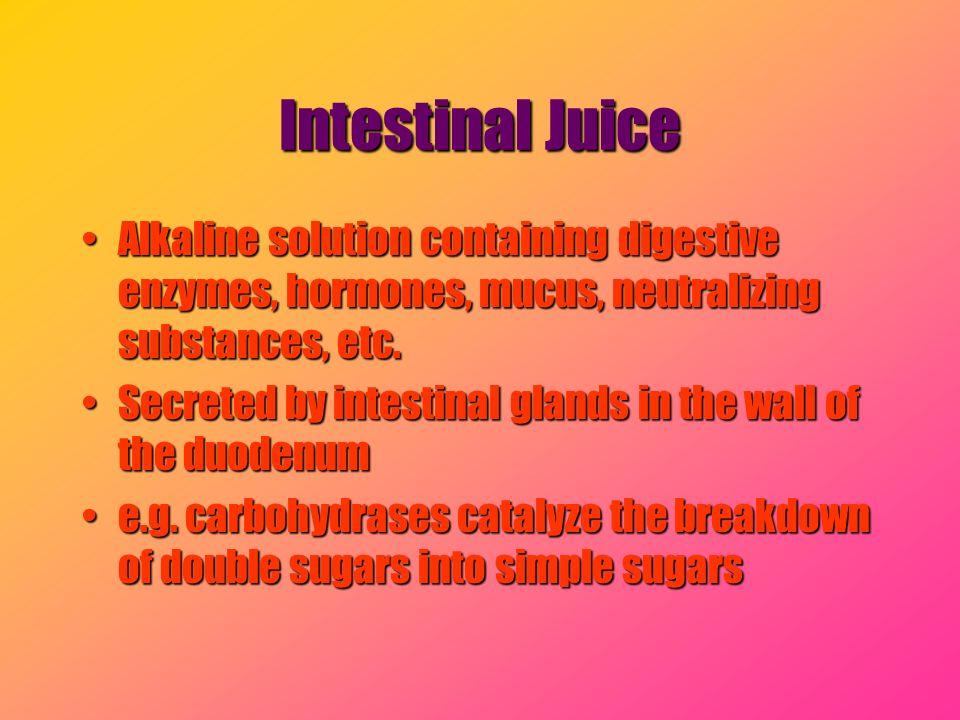 Intestinal Juice Alkaline solution containing digestive enzymes, hormones, mucus, neutralizing substances, etc.