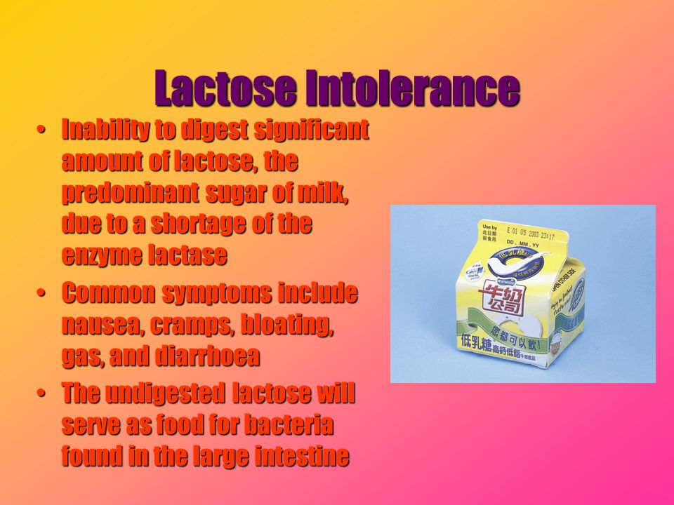 Lactose Intolerance Inability to digest significant amount of lactose, the predominant sugar of milk, due to a shortage of the enzyme lactase.