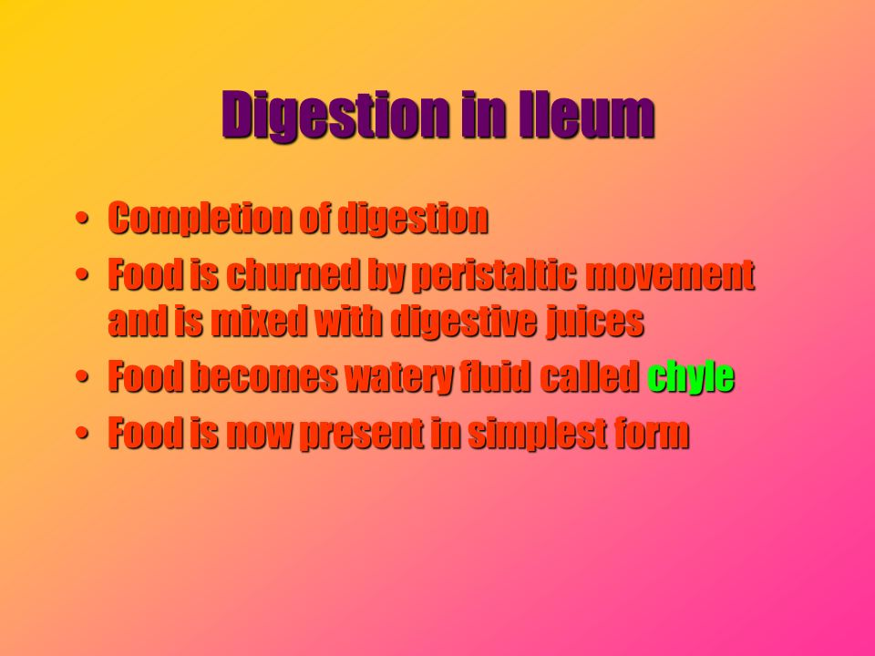 Digestion in Ileum Completion of digestion