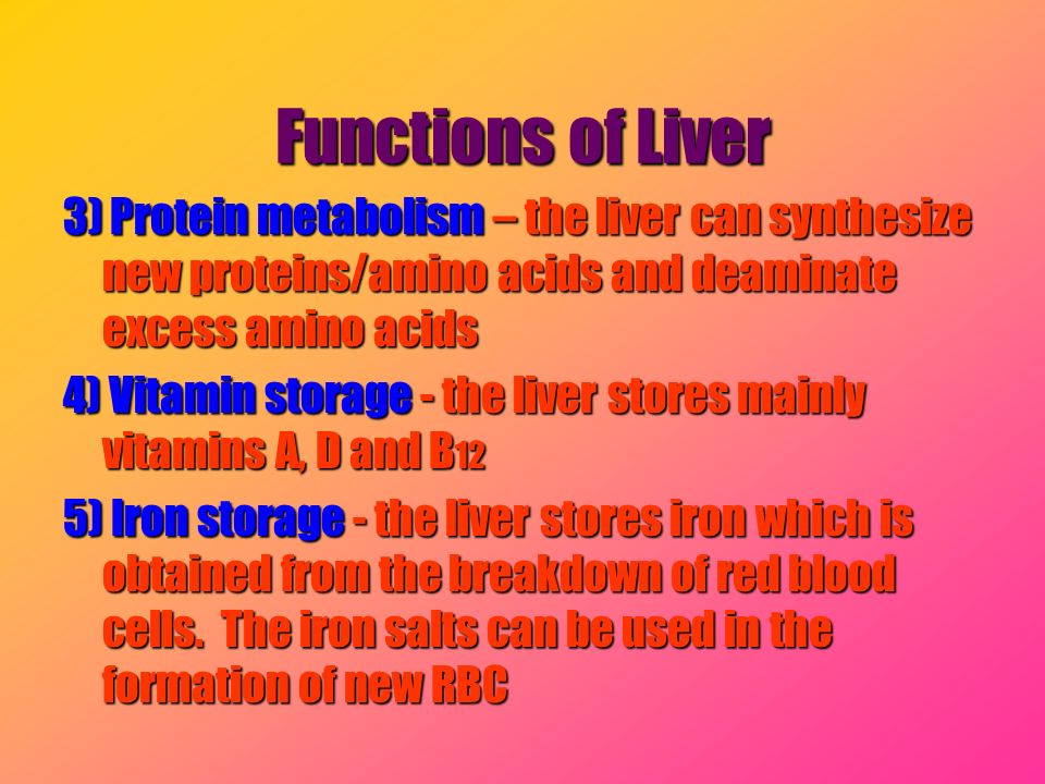 Functions of Liver 3) Protein metabolism – the liver can synthesize new proteins/amino acids and deaminate excess amino acids.