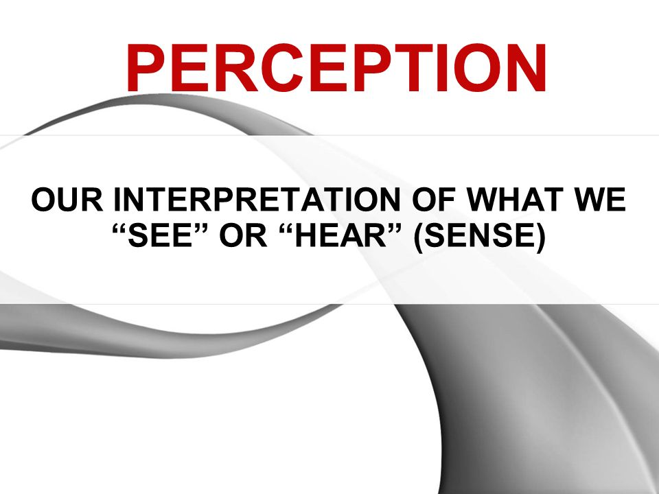 OUR INTERPRETATION OF WHAT WE SEE OR HEAR (SENSE)