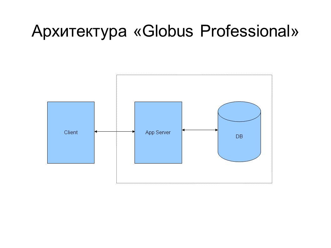 Архитектура «Globus Professional»