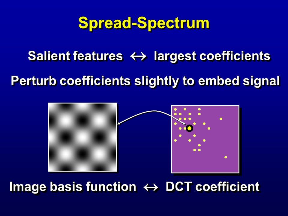 Salient features  largest coefficients