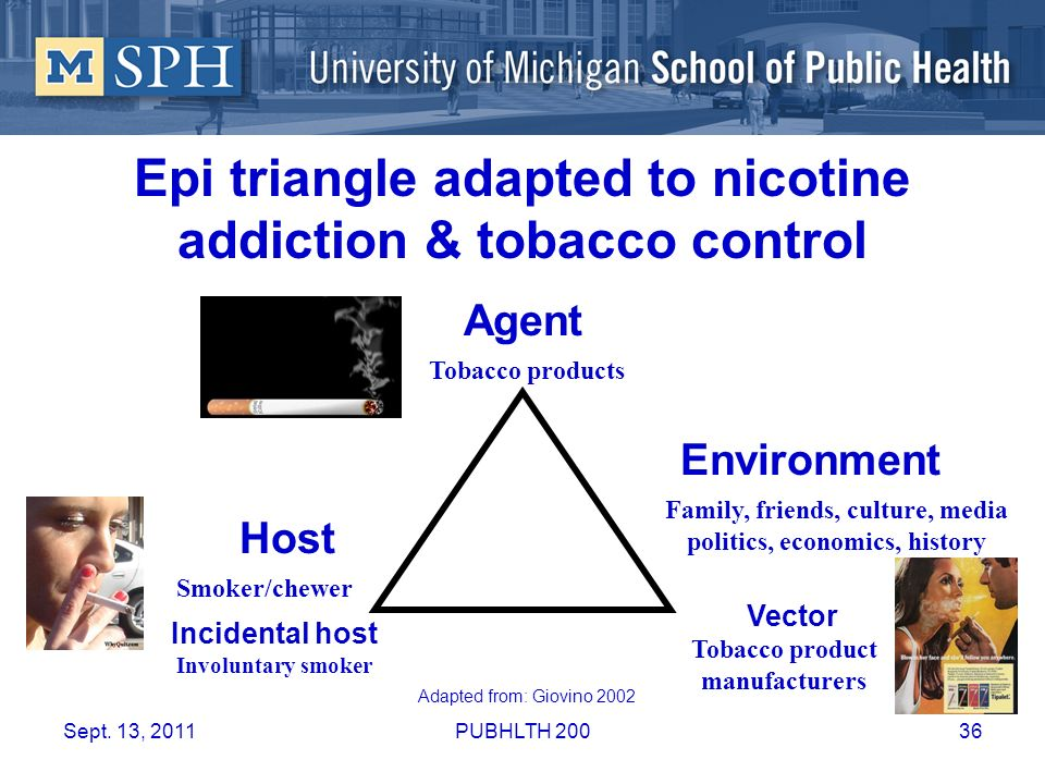 Epi triangle adapted to nicotine addiction & tobacco control