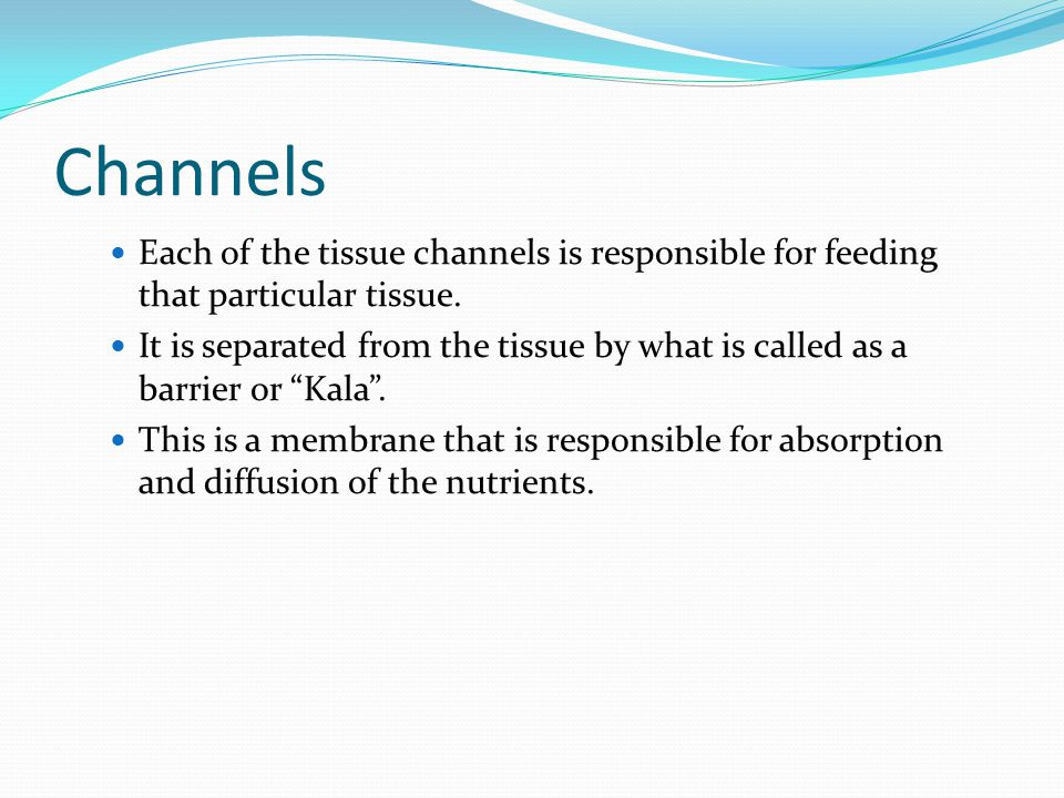 Channels Each of the tissue channels is responsible for feeding that particular tissue.