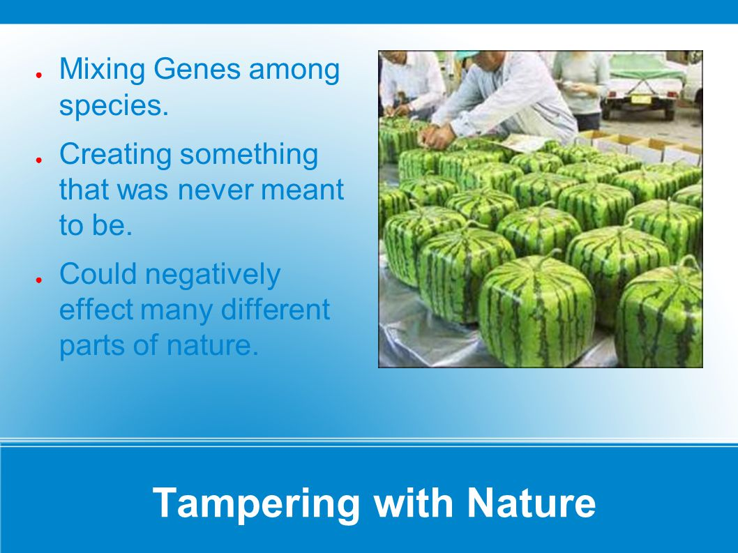 Tampering with Nature Mixing Genes among species.