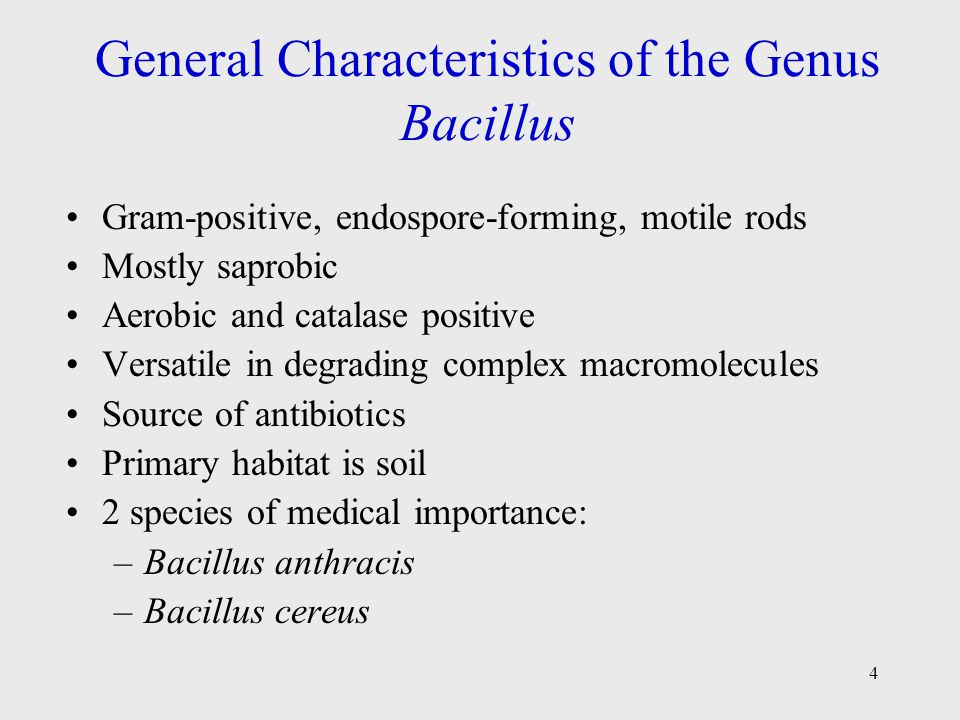 General Characteristics of the Genus Bacillus