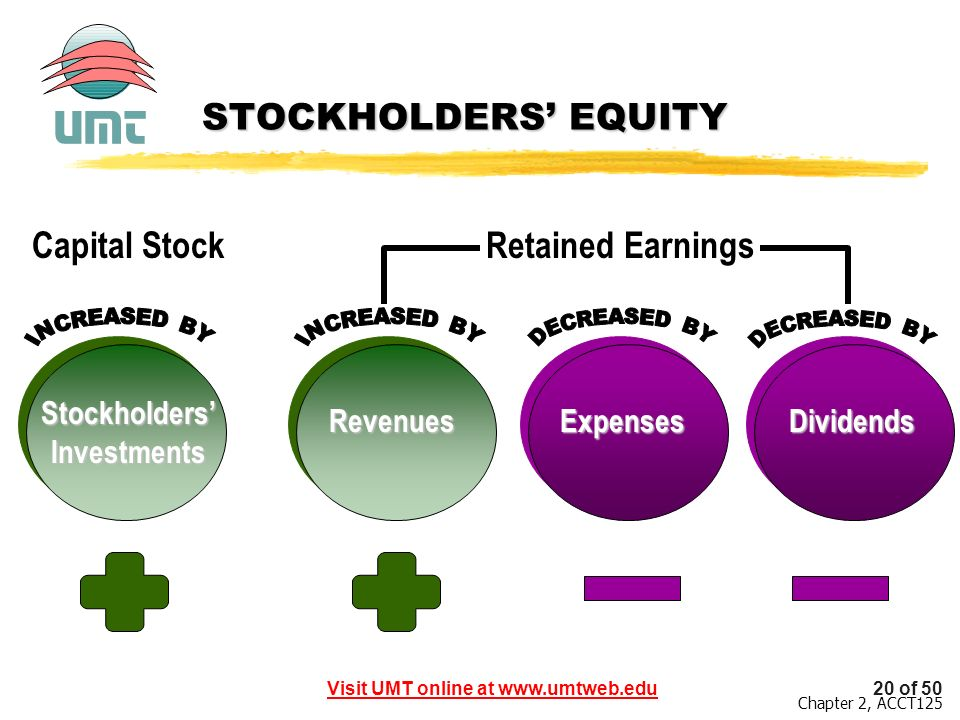 Stockholders' Investments