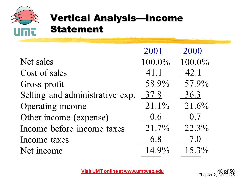 Vertical Analysis—Income Statement