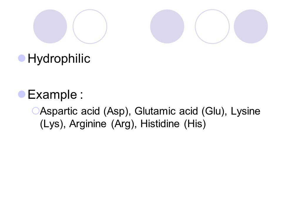 Hydrophilic Example : Aspartic acid (Asp), Glutamic acid (Glu), Lysine (Lys), Arginine (Arg), Histidine (His)