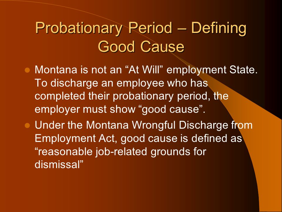 Probationary Period – Defining Good Cause