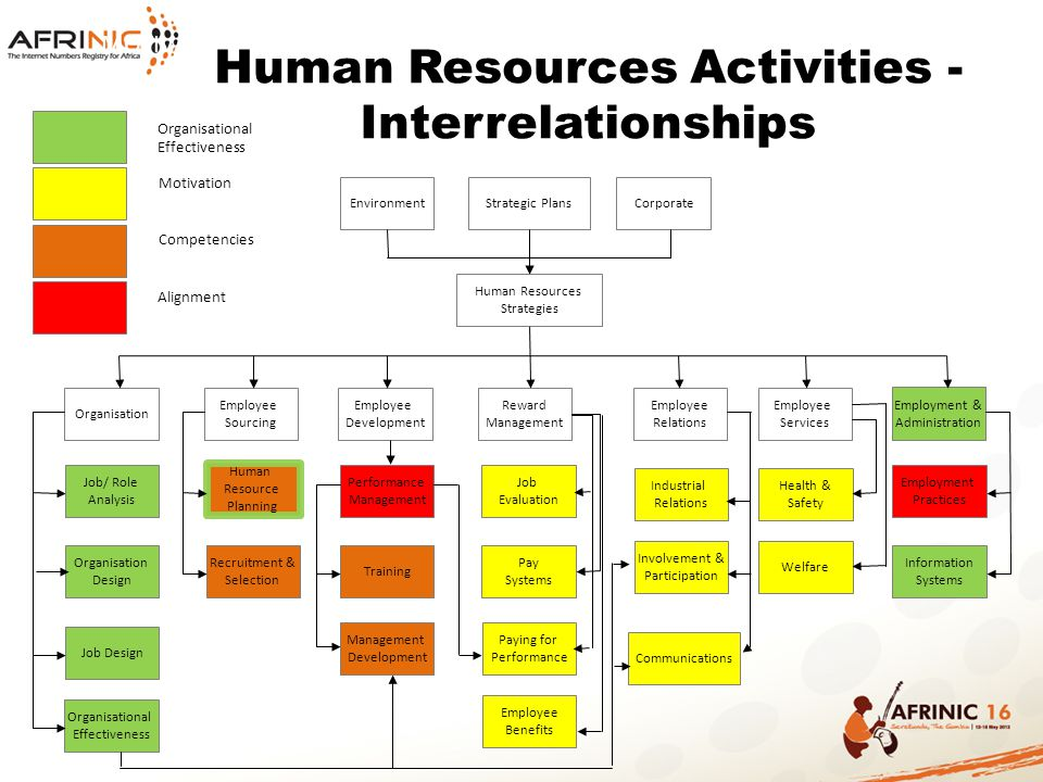 Human Resources Activities - Interrelationships