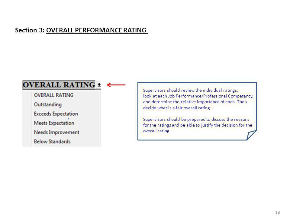 Section 3: OVERALL PERFORMANCE RATING