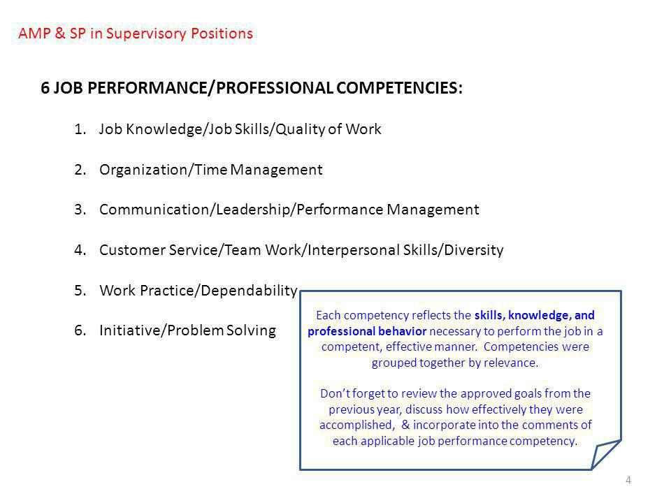 6 JOB PERFORMANCE/PROFESSIONAL COMPETENCIES: