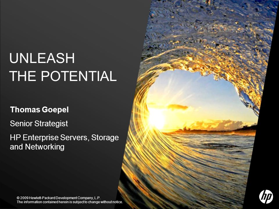 UNLEASH THE POTENTIAL Thomas Goepel Senior Strategist
