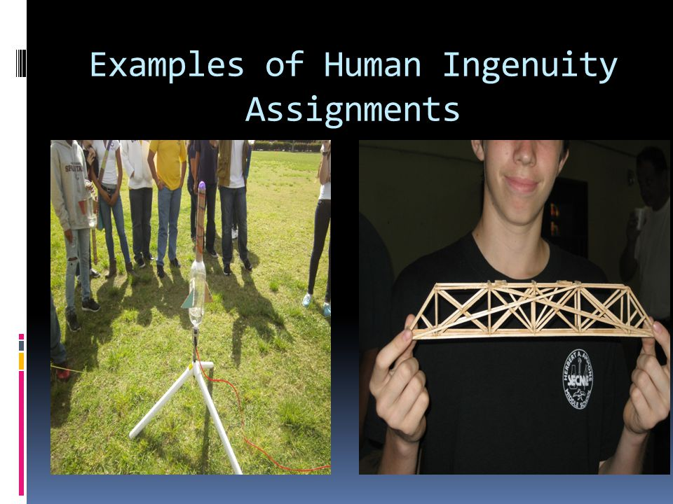 Examples of Human Ingenuity Assignments
