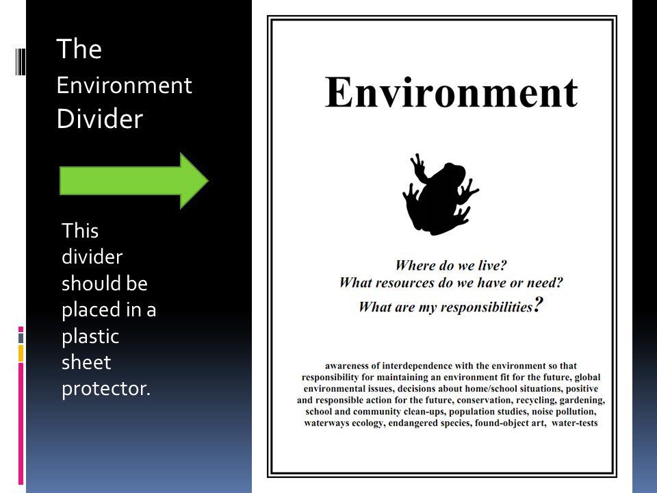 The Environment Divider