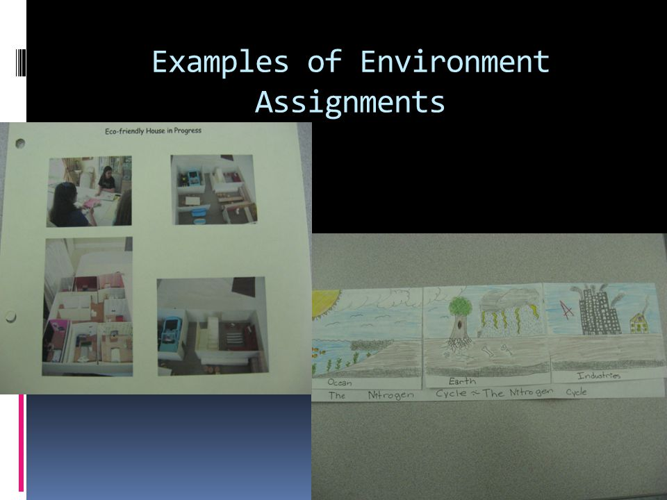 Examples of Environment Assignments