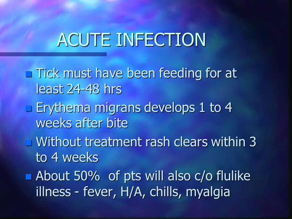 ACUTE INFECTION Tick must have been feeding for at least 24-48 hrs