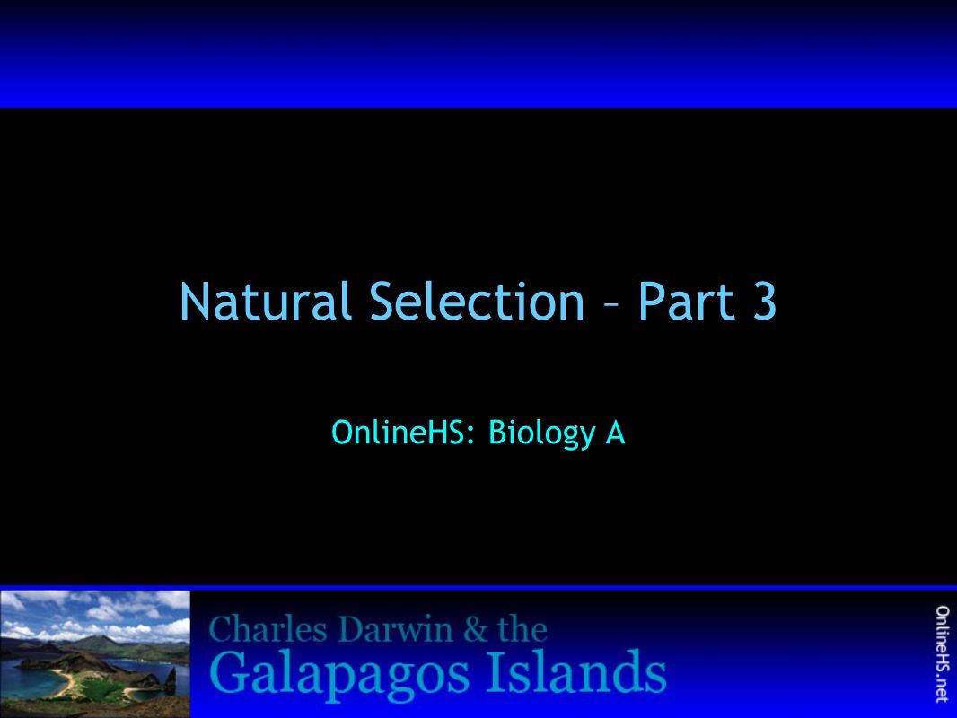 Natural Selection – Part 3