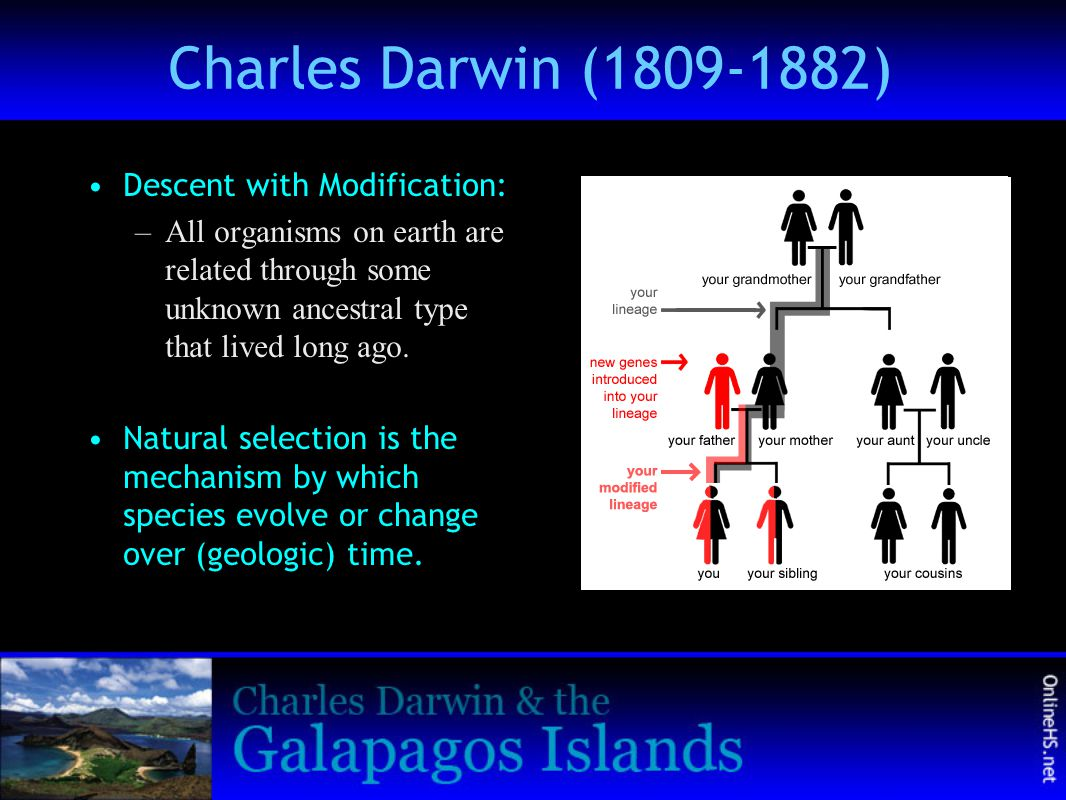 Charles Darwin (1809-1882) Descent with Modification: