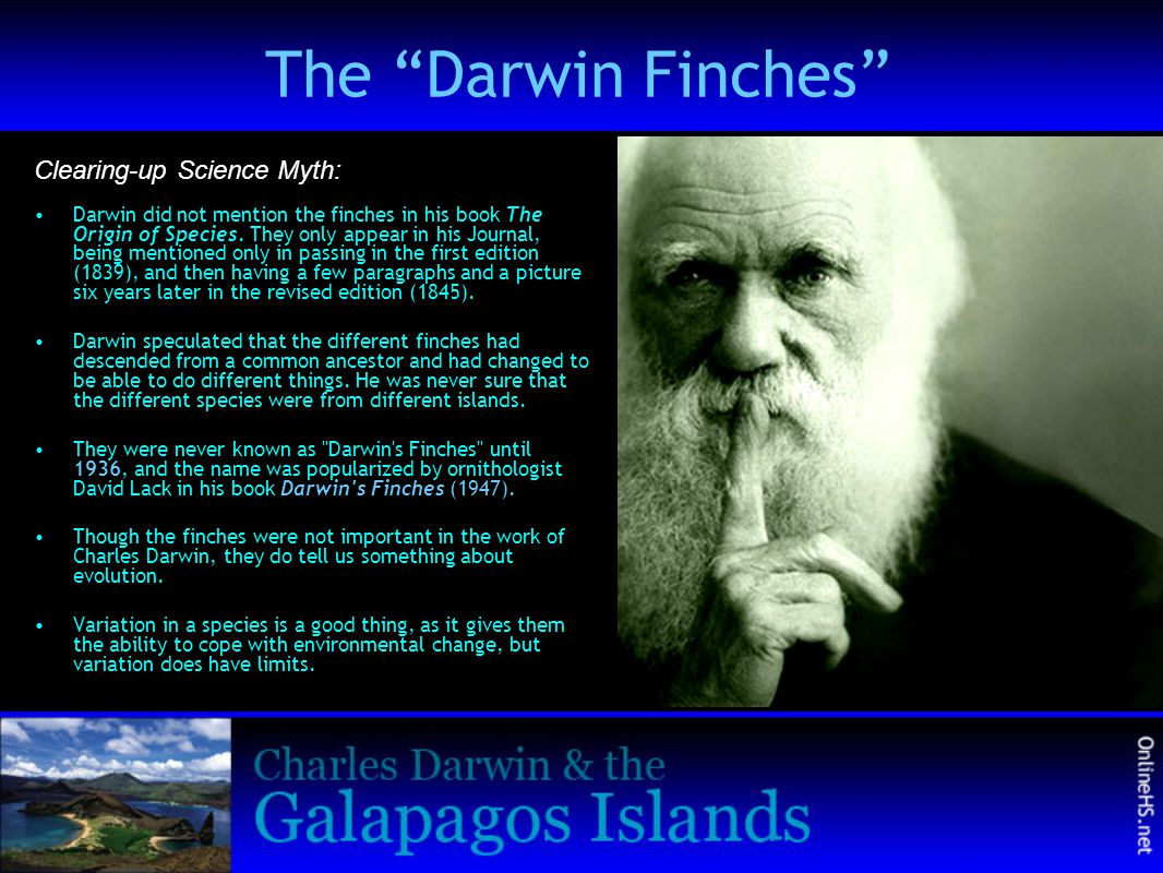 The Darwin Finches Clearing-up Science Myth: