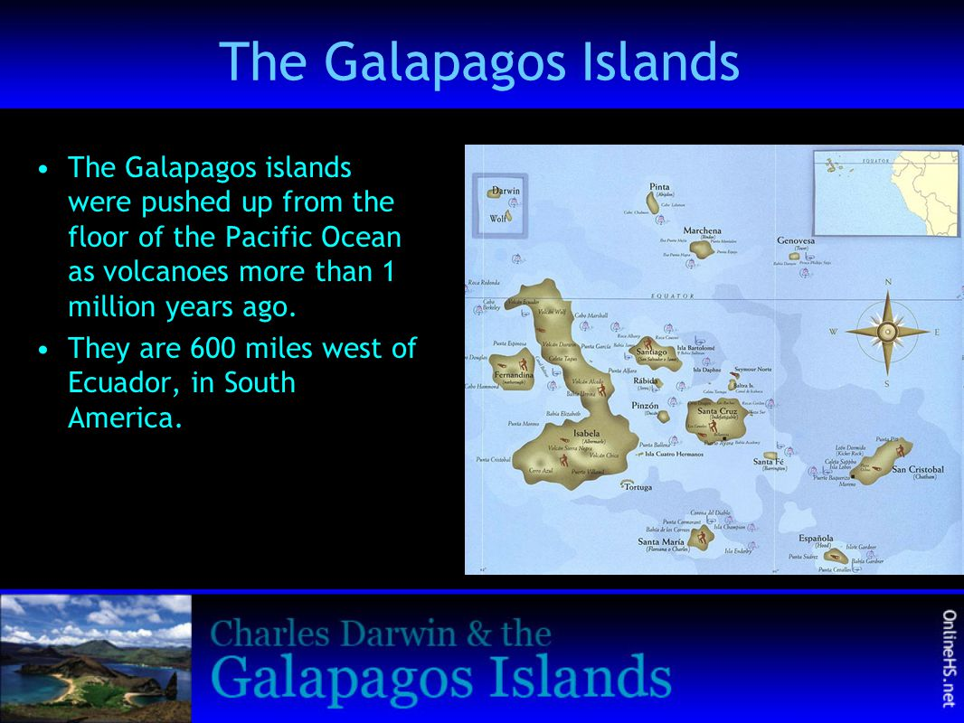 The Galapagos Islands The Galapagos islands were pushed up from the floor of the Pacific Ocean as volcanoes more than 1 million years ago.